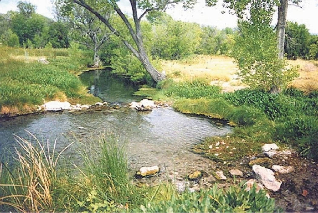 Ash Spring, a popular spring-fed swimming hole in Lincoln County, was closed by the Bureau of Land Management in July 2013 amid concerns about public safety and enviromental damage. (Courtesy, Nev ...
