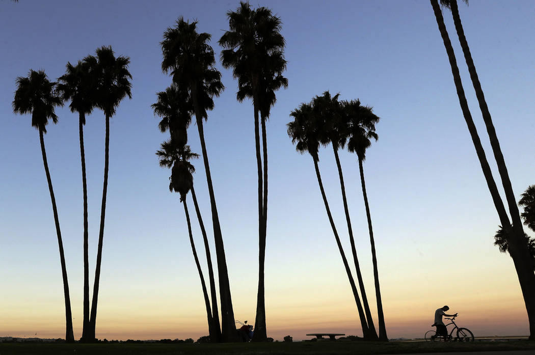 A man who declined to give his name pushes a broken bicycle from where he is living with two others below palm trees along Mission Bay in San Diego in October. (AP Photo/Gregory Bull)