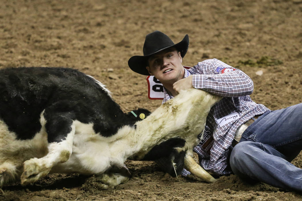 J.D. Struxness of Appleton, Minn. wrestles a steer during the third night of the 59th Wrangler National Finals Rodeo at the Thomas & Mack Center in Las Vegas, Saturday, Dec. 9, 2017. Joel Ange ...