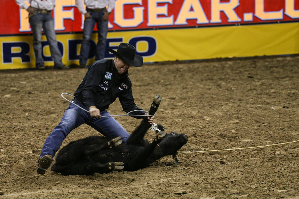 Trevor Brazile of Decatur, Texas ropes a steer in the tie-down roping event during the third night of the 59th Wrangler National Finals Rodeo at the Thomas & Mack Center in Las Vegas, Saturday ...