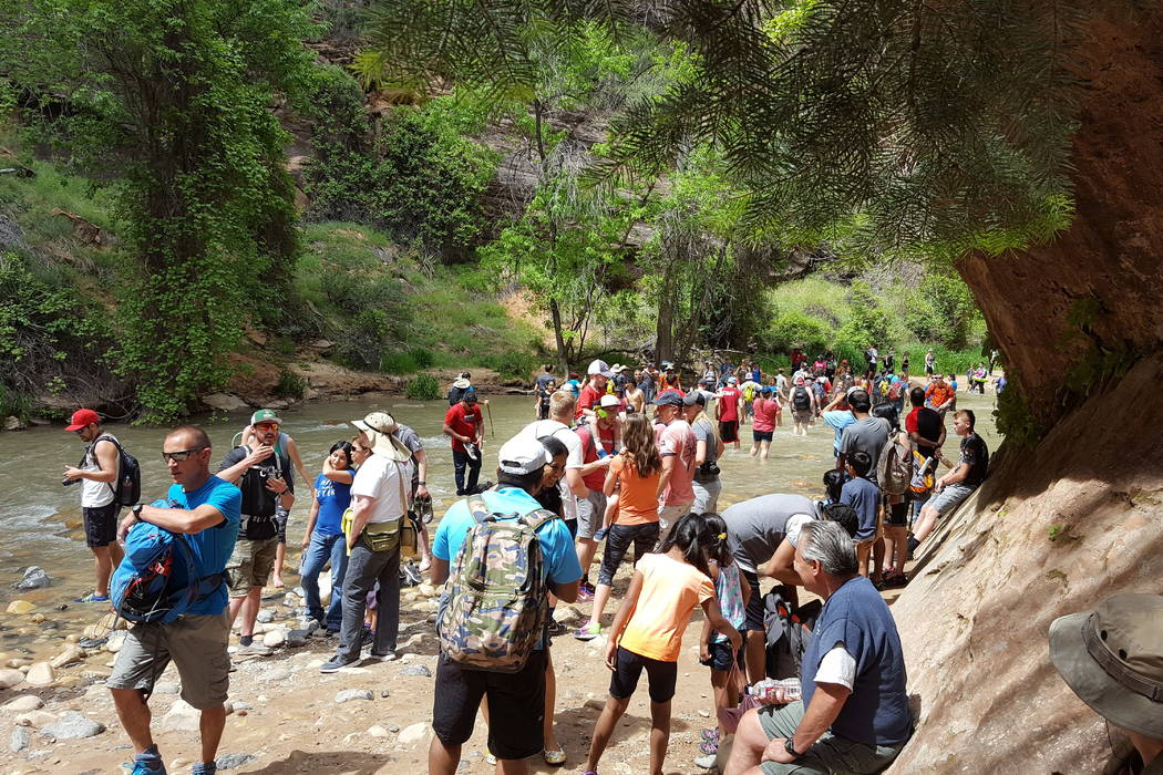 In this May 28, 2016 photo provided by Zion National Park, people gather at the entrance to the Narrow in Zion National Park, Utah. The sweeping red-rock vistas at Zion National Park are increasin ...