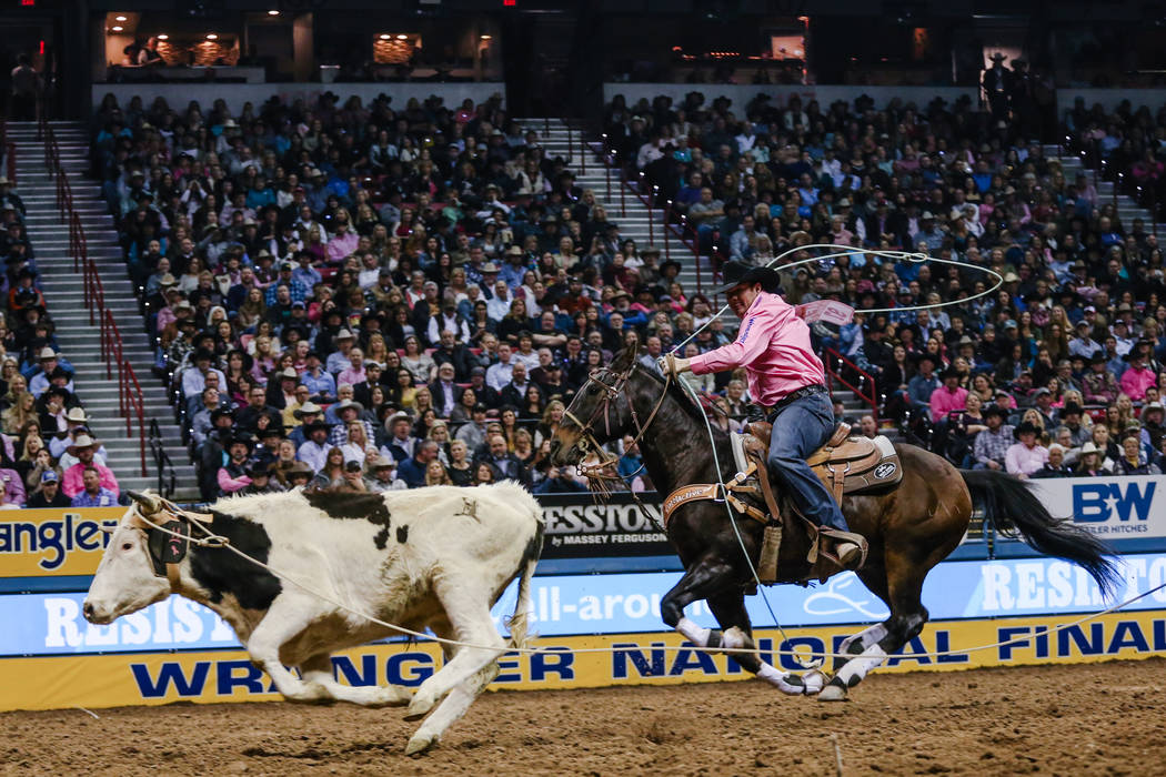 Tyler McKnight of Wells, Texas chases down a steer in the team roping event during the fifth night of the 59th Wrangler National Finals Rodeo at the Thomas & Mack Center in Las Vegas, Monday,  ...