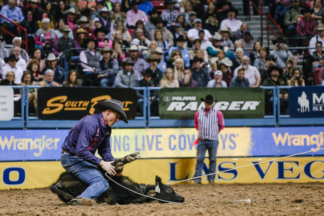 Tuf Cooper of Weatherford, Texas ties down a steer in the tie-down roping event during the fifth night of the 59th Wrangler National Finals Rodeo at the Thomas & Mack Center in Las Vegas, Mond ...