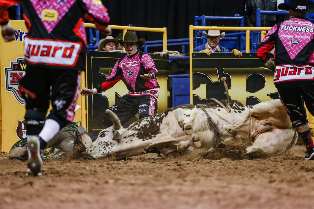 Jordan Hansen of Okotoks, Alberta, bottom left, and Crime Boss hit the ground in the bull riding event during the fifth night of the 59th Wrangler National Finals Rodeo at the Thomas & Mack Ce ...