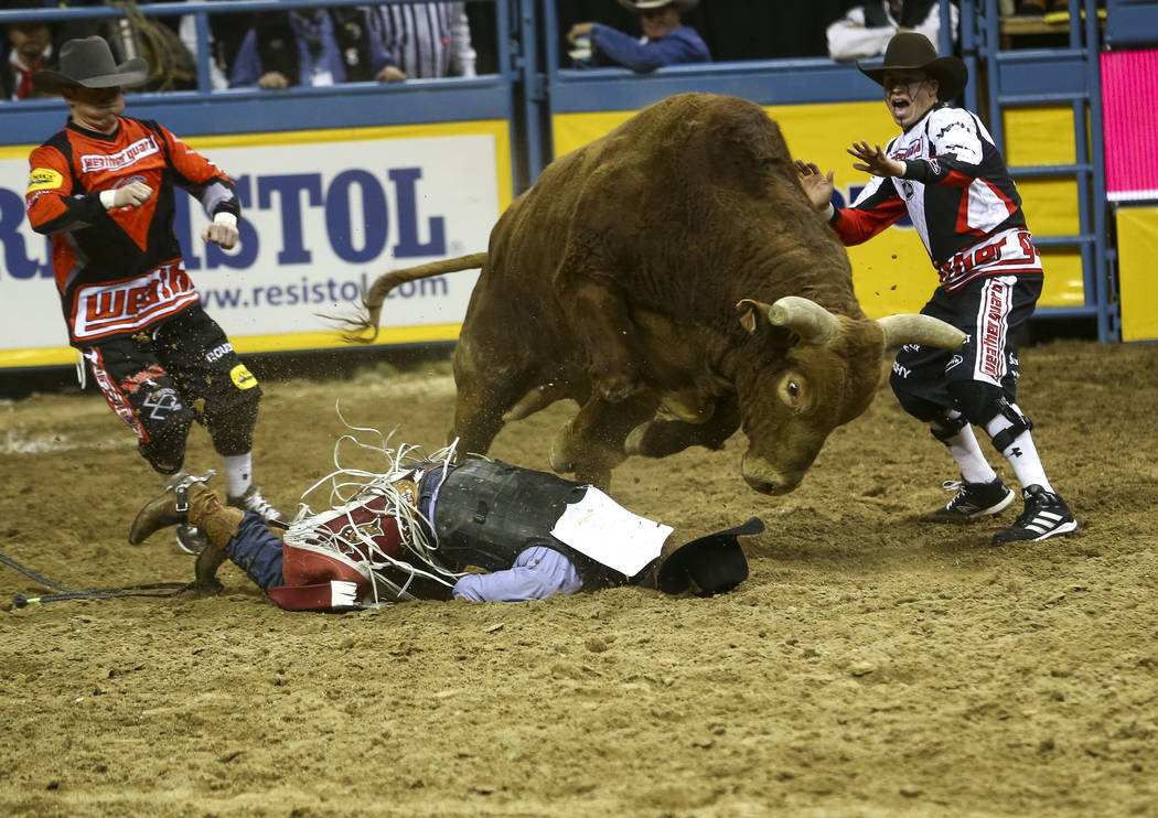 Guthrie Murray of Miami, Oklahoma hits the dirt after getting bucked of his bull during the bull riding competition in the sixth go-round of the Wrangler National Finals Rodeo, Tuesday, Dec. 12, 2 ...