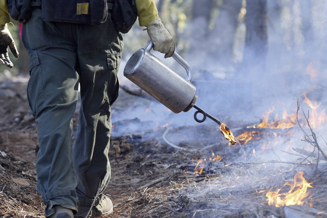 A firefighter uses a drip torch during a prescribed burn of about 27 acres near Inskip, Calif., in 2008. (Bill Husa/Chico Enterprise-Record via AP, File)