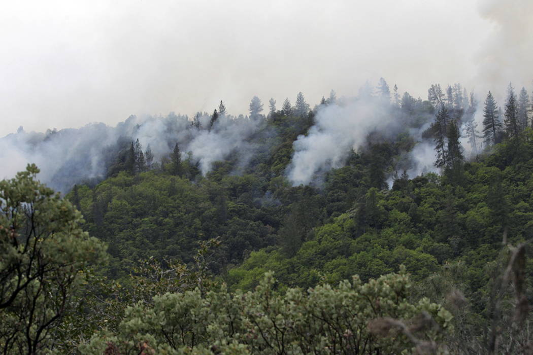 A controlled burn clears about 30 acres along the eastern edge of Whiskeytown National Recreation Area in Shasta County, Calif., in 2015. (Andreas Fuhrmann/The Record Searchlight via AP, File)