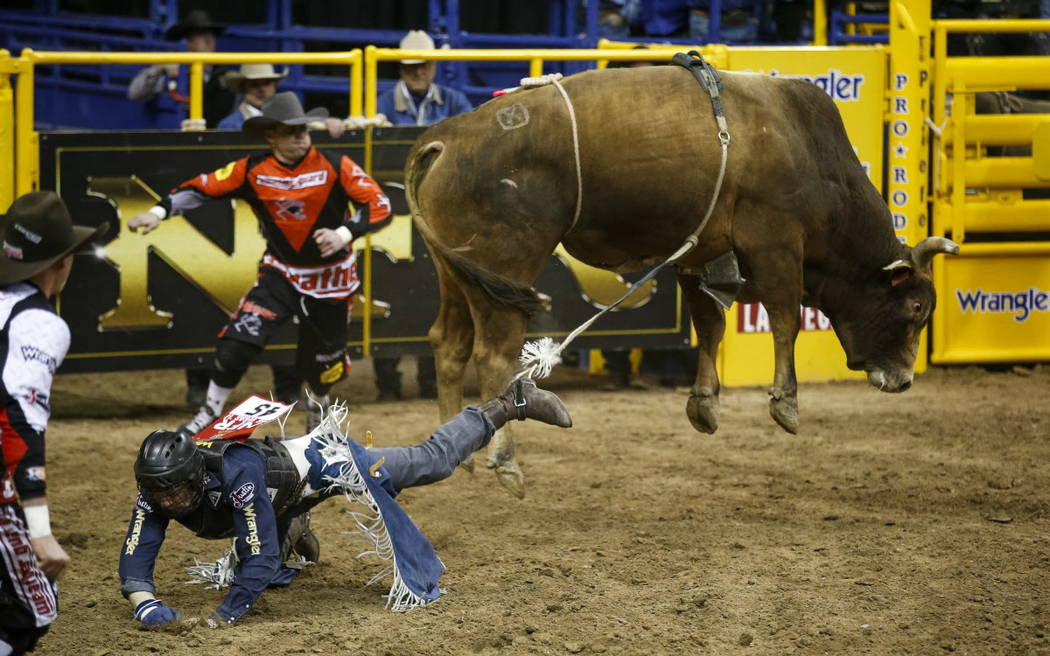 Joe Frost of Randlett, Utah hits the dirt after getting bucked from Wild Goose in the bull riding competition during the ninth go-round of the National Finals Rodeo, Friday, Dec. 15, 2017, at the  ...