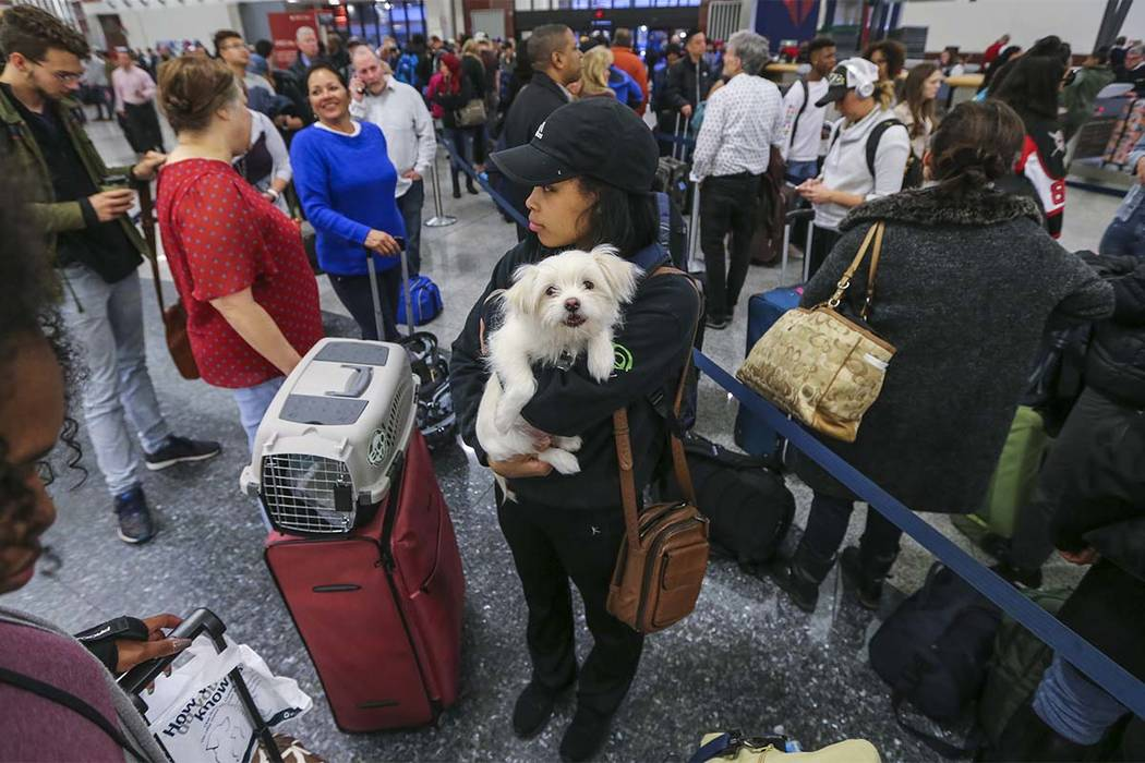 Destiny Easley and Bronx from Jacksonville, Alabama, on her way to Buckeye, Arizona, had to miss her flight because of the long lines at the Delta ticket counter on Monday Dec. 18, 2017 at Hartsfi ...