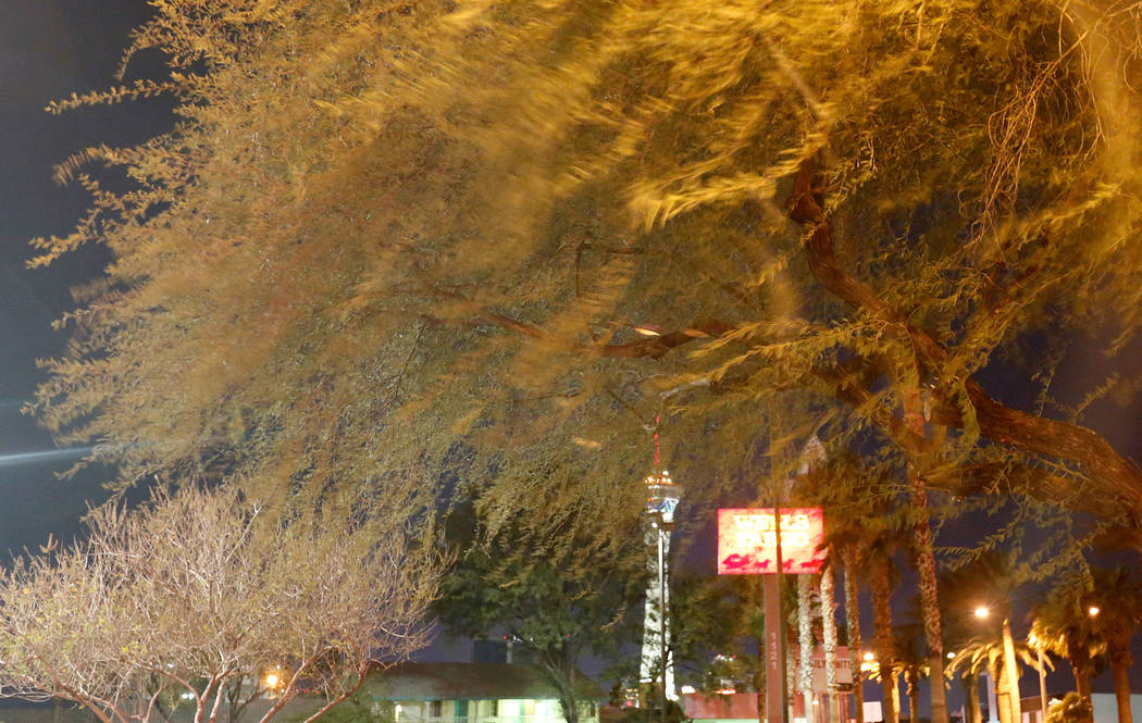 Strong winds blow threes in Las Vegas, Wednesday, Dec. 20, 2017. Strong gusts blew through the Las Vegas Valley on Wednesday evening, causing flight delays at McCarran International Airport and fo ...