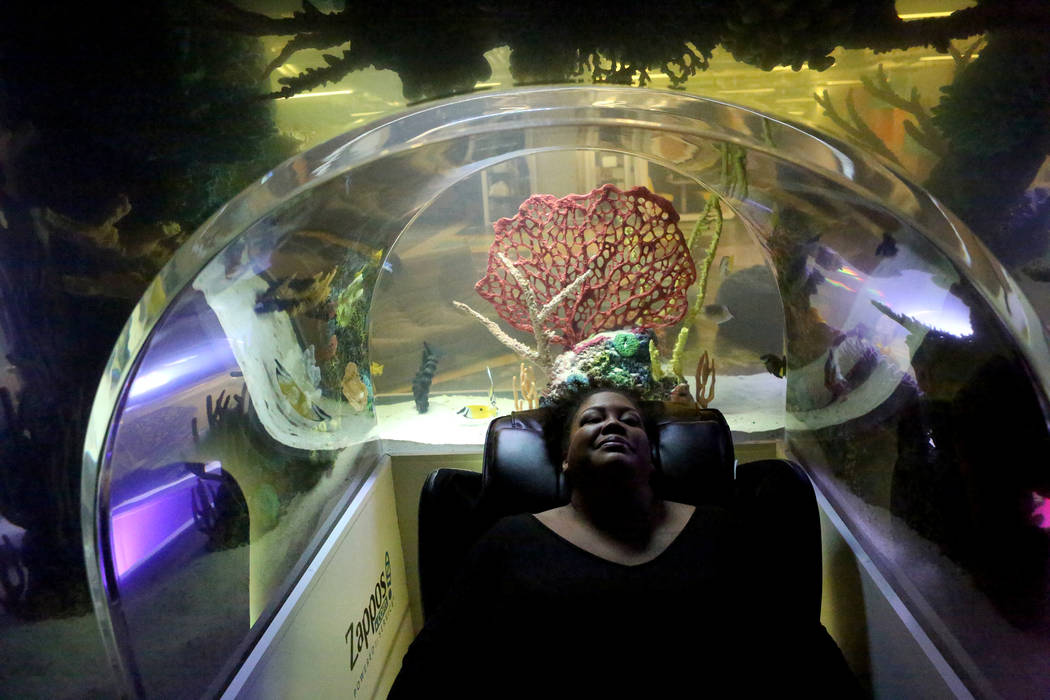 Zappos 39 tanked 39 crew turn up big with nap room in las for Fish tank las vegas