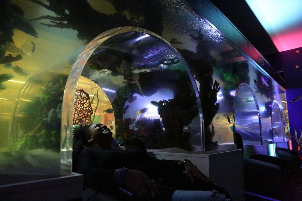 Culture guide Letha Myles takes a brief break in the new Zappos nap room which features a wall-sized aquarium on Thursday, Dec. 21, 2017. Michael Quine/Las Vegas Review-Journal @Vegas88s