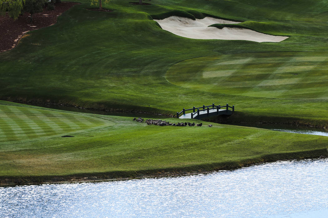The Wynn Country Club in Las Vegas, Friday, Dec. 22, 2017. The golf course is shutting down on Dec. 23 and will be replaced with Paradise Park, a lagoon-themed attraction. Joel Angel Juarez Las Ve ...