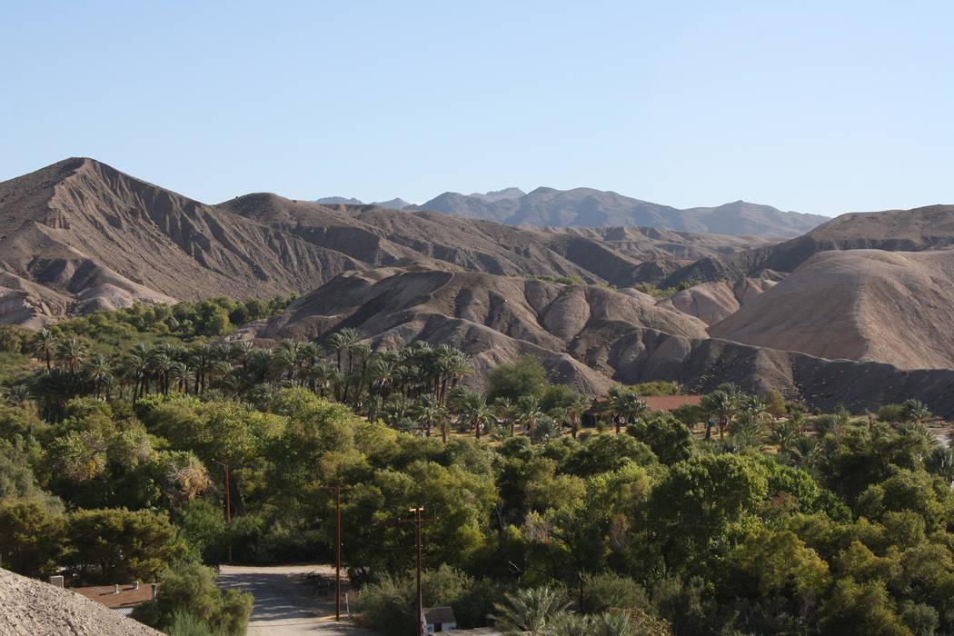 Looking down at China Ranch Date Farm from the Mesa Trail. (Deborah Wall)