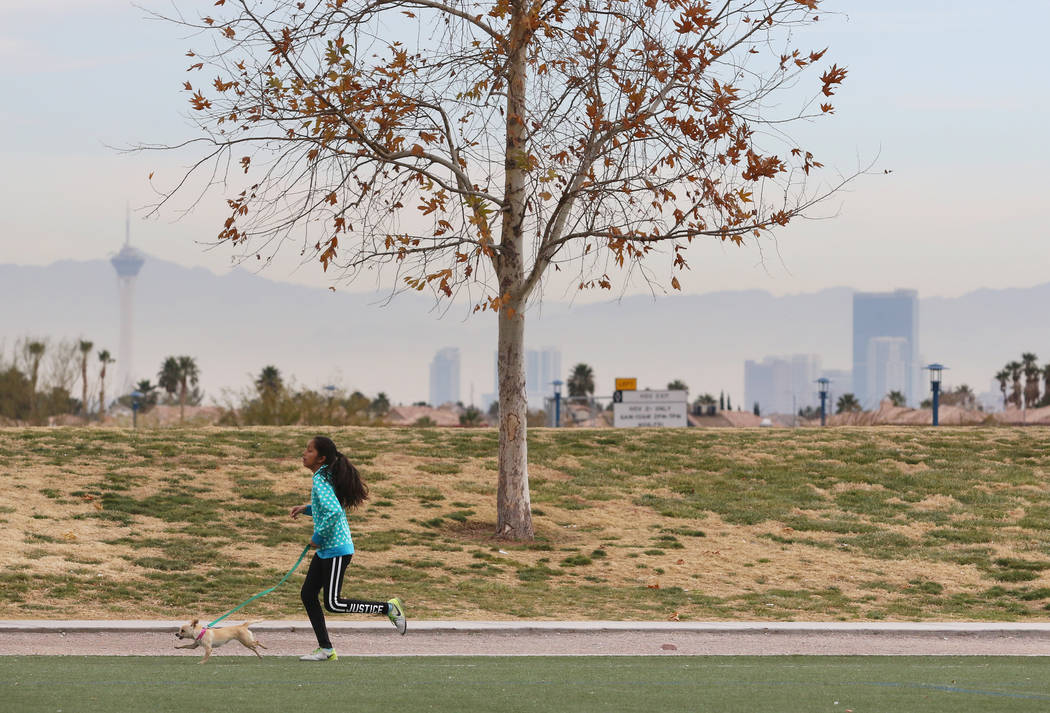 Jazmin Alvarez, 11, runs with her pet Doll during a family soccer session at Kellogg Zaher Soccer Complex on Christmas Eve morning Sunday, Dec. 24, 2017, in Las Vegas. Ronda Churchill Las Vegas Re ...
