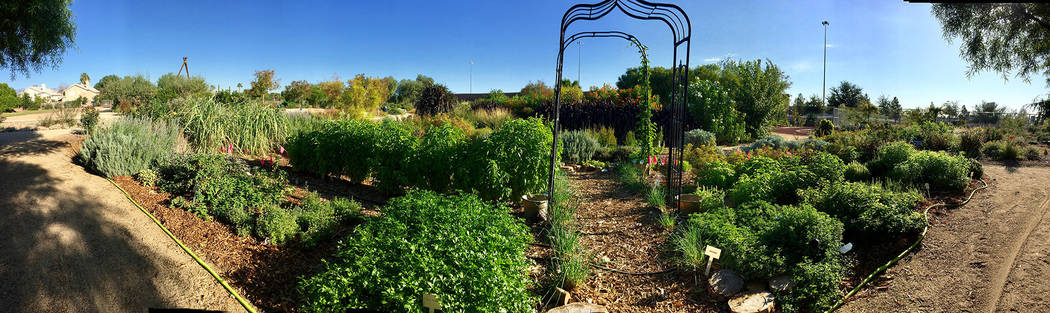 University of Nevada Cooperative Extension The University of Nevada Cooperative Extension grows herbs in its demonstration garden at 8050 Paradise Road.