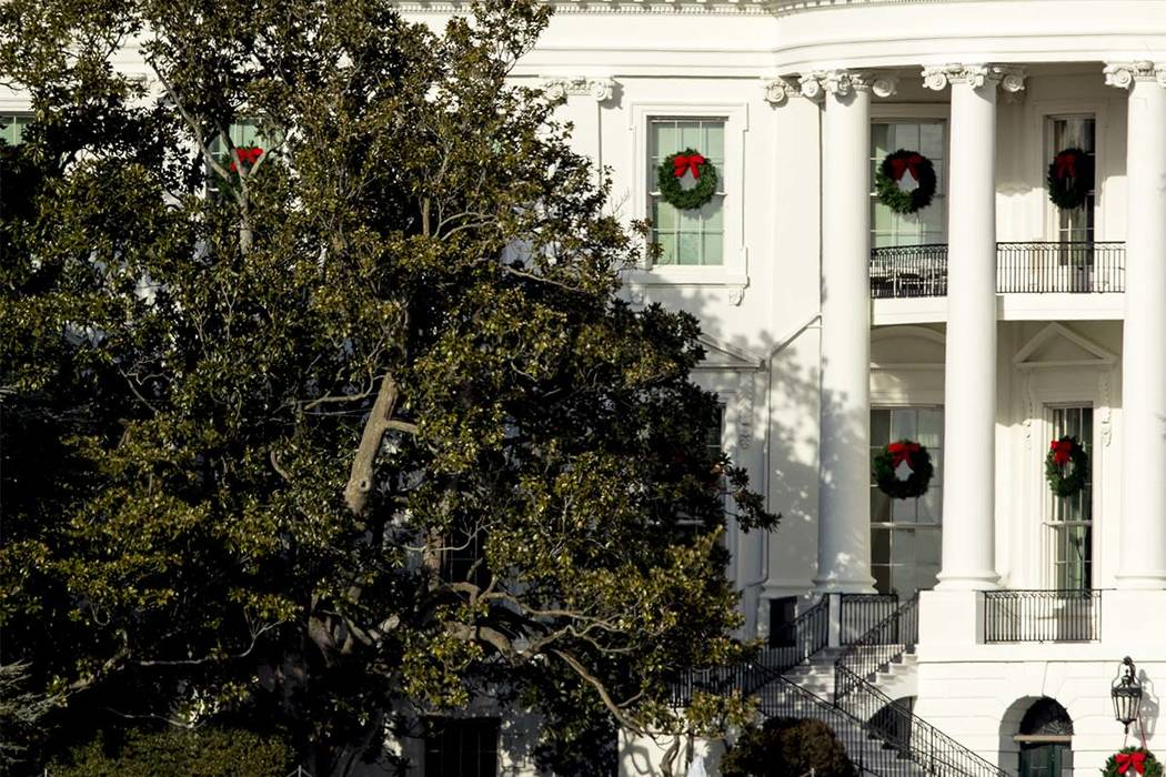 Oldest Tree On White House Lawn To Be Cut Down Removed Las Vegas
