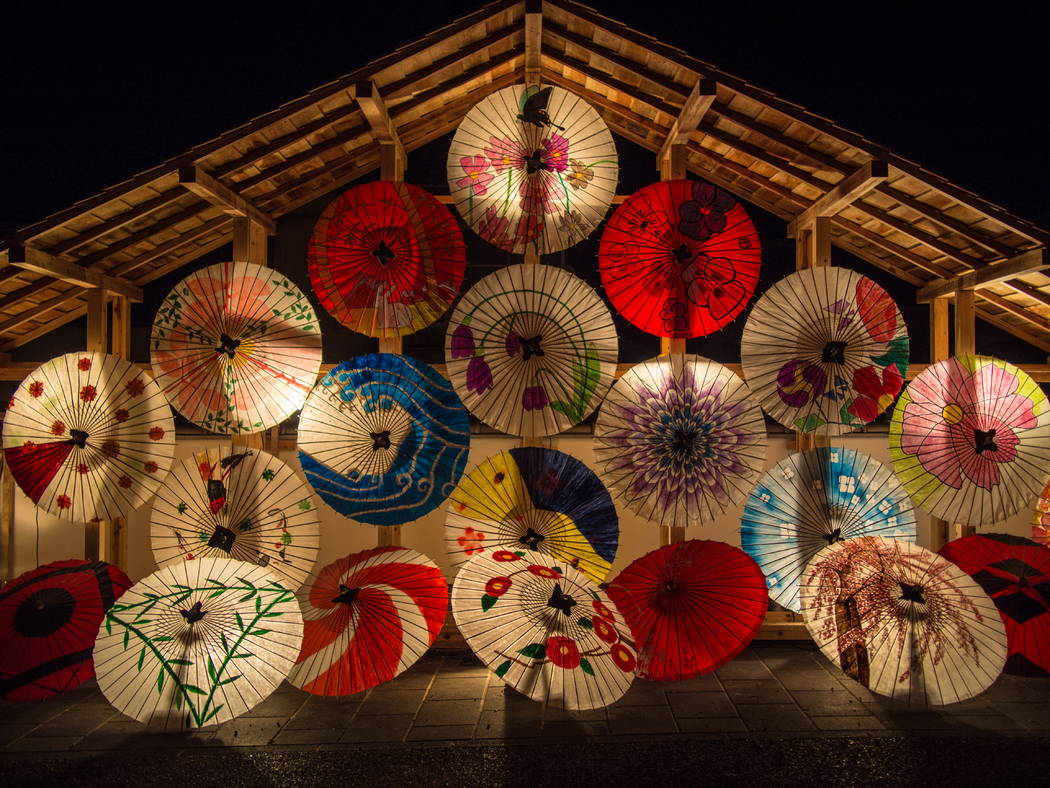 Lanterns are displayed at a previous China Lights Festival. (Tianyu Arts & Culture)