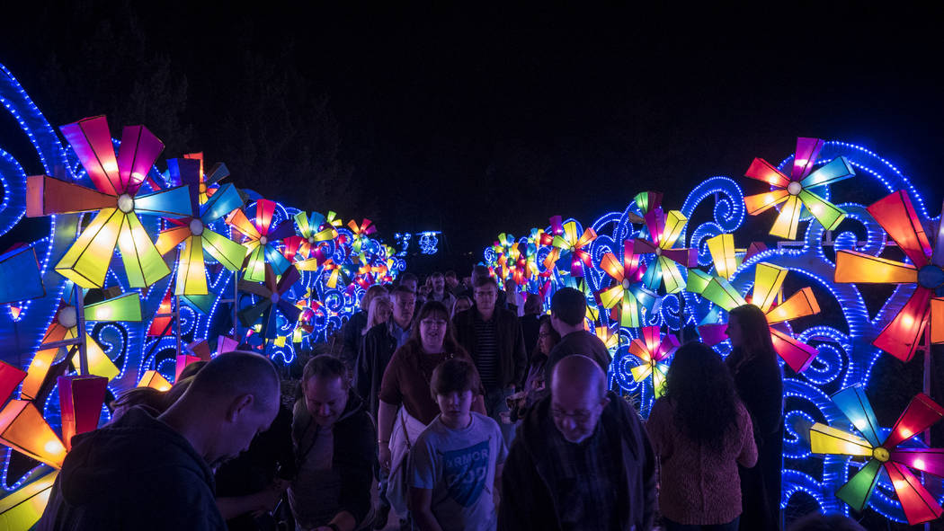 Lanterns are displayed at a previous China Lights Festival. (Blaire Ritter)
