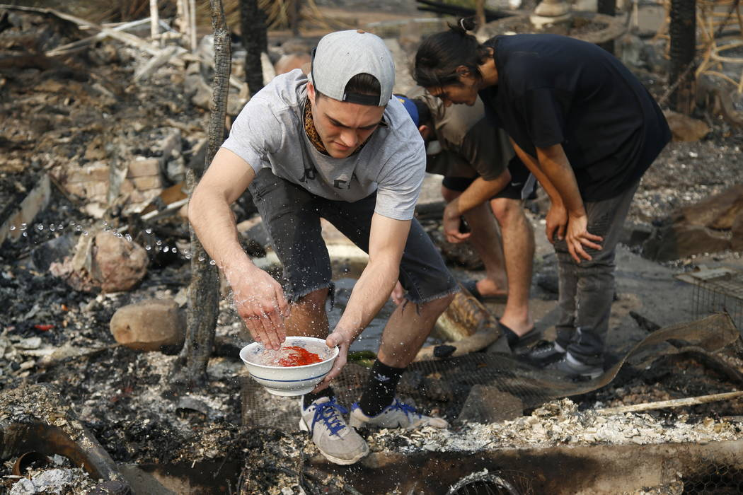 Logan Hertel fills a bowl of goldfish with water after he and some friends rescued them from a destroyed home on Parker Hill Court in Santa Rosa, Calif., in October.  (Nhat V. Meyer/San Jose Mercu ...