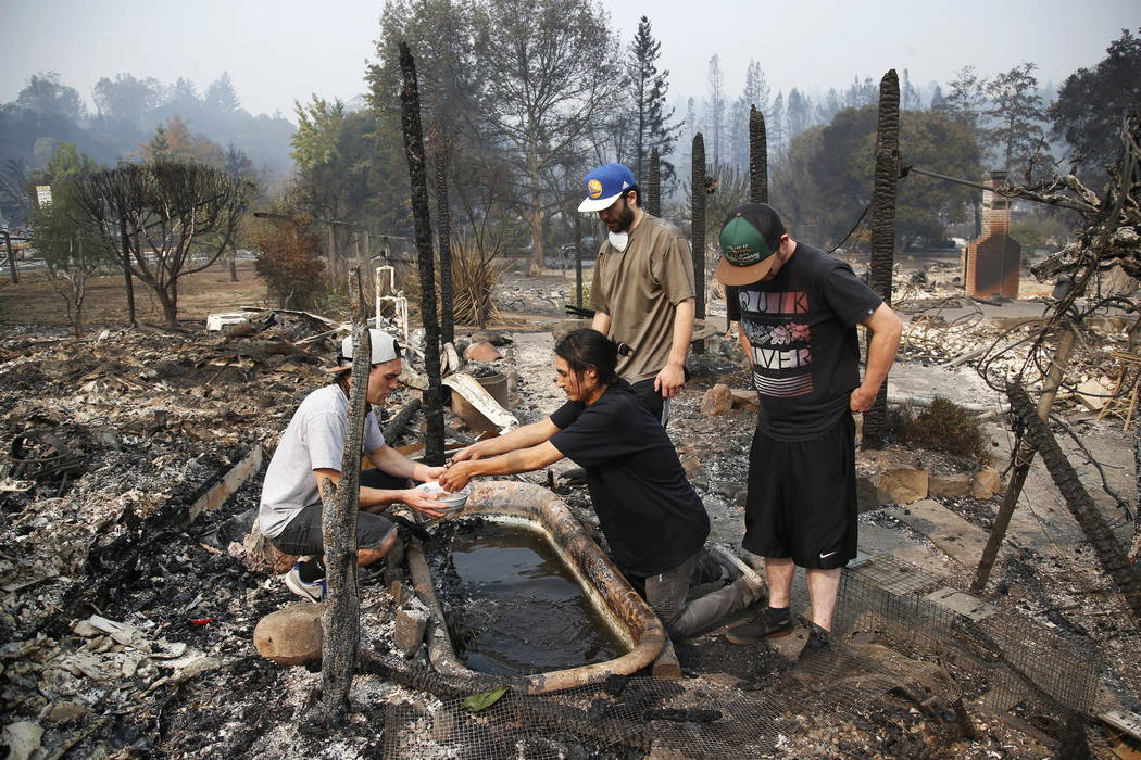 Stephen Felando, center, hands Logan Hertel a gold fish they came across in scorched remains while going to their friends home on Parker Hill Court in Santa Rosa, Calif., in October. (Nhat V. Meye ...