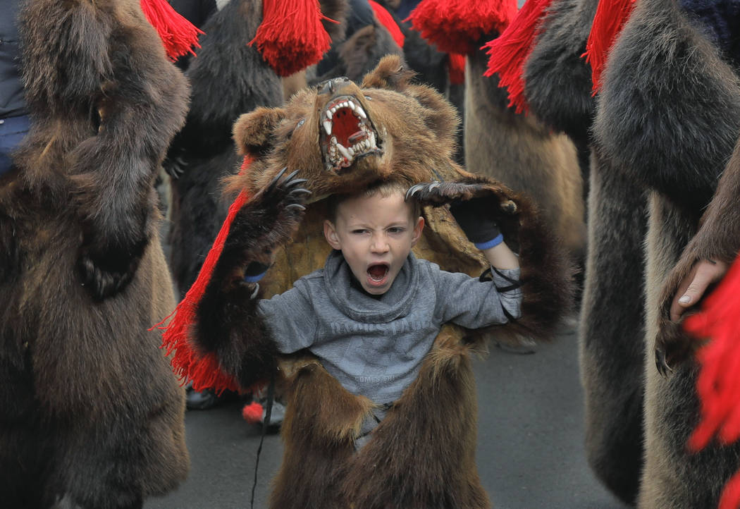 A child wearing a bear fur costume yawns during a parade of new year's rituals in Comanesti, northern Romania, Saturday, Dec. 30, 2017. The tradition, originating in pre-Christian times, when danc ...