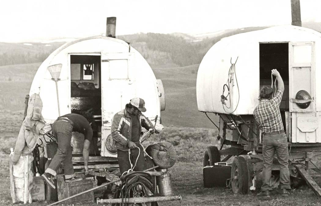 Men attending to various tasks at their sheep wagons at a campsite. (Jon Bilbao Basque Library, University of Nevada-Reno Libraries)