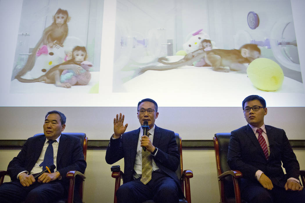 Sun Qiang, center, the director of the Nonhuman Primate Facility of the Institute of Neurosciences at the Chinese Academy of Sciences, speaks as Poo Muming, left, director of the Institute of Neur ...