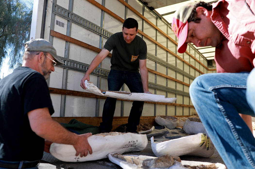 Fabian Hardy, center, helps unload ice age fossils, which were relocated from the San Bernardino County Museum, at the Las Vegas Natural History Museum in Las Vegas, Sunday, Jan. 28, 2018. The fed ...