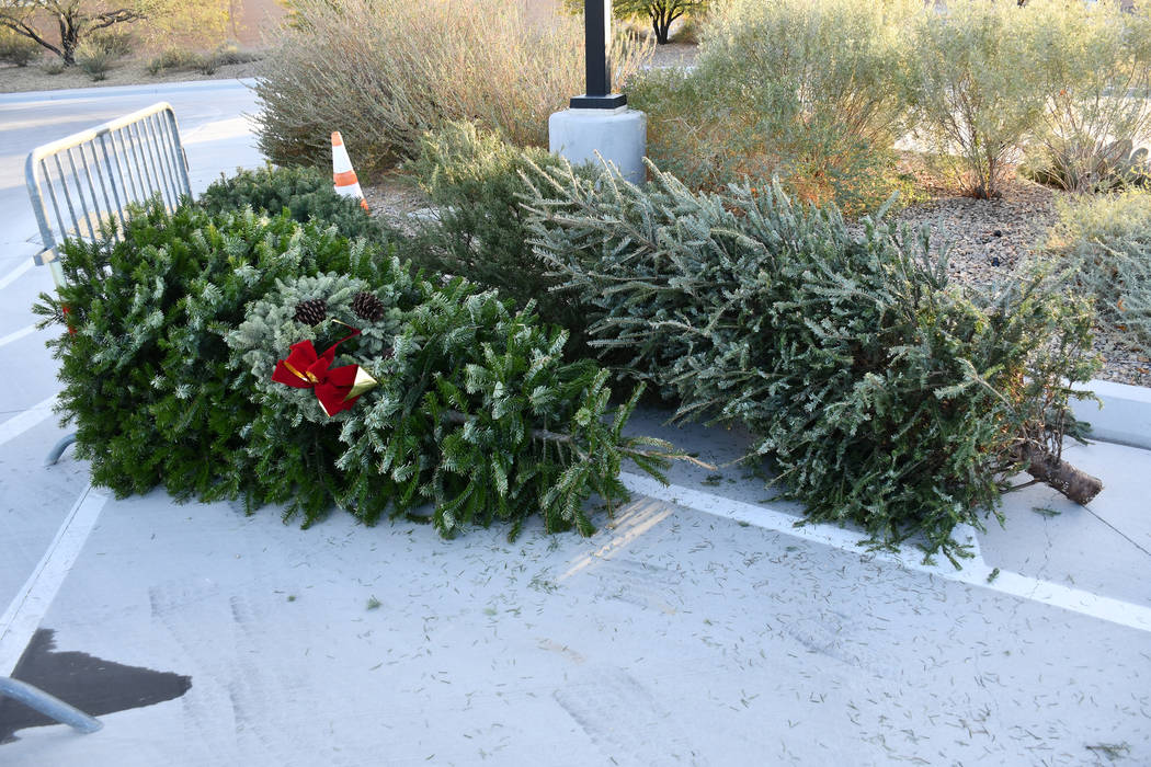 Christmas trees can be dropped off at 30 unmanned locations across the Las Vegas Valley free of charge from Dec. 25 thorough Jan. 15. Shown in photo is the drop-off site near the Springs Preserve. ...