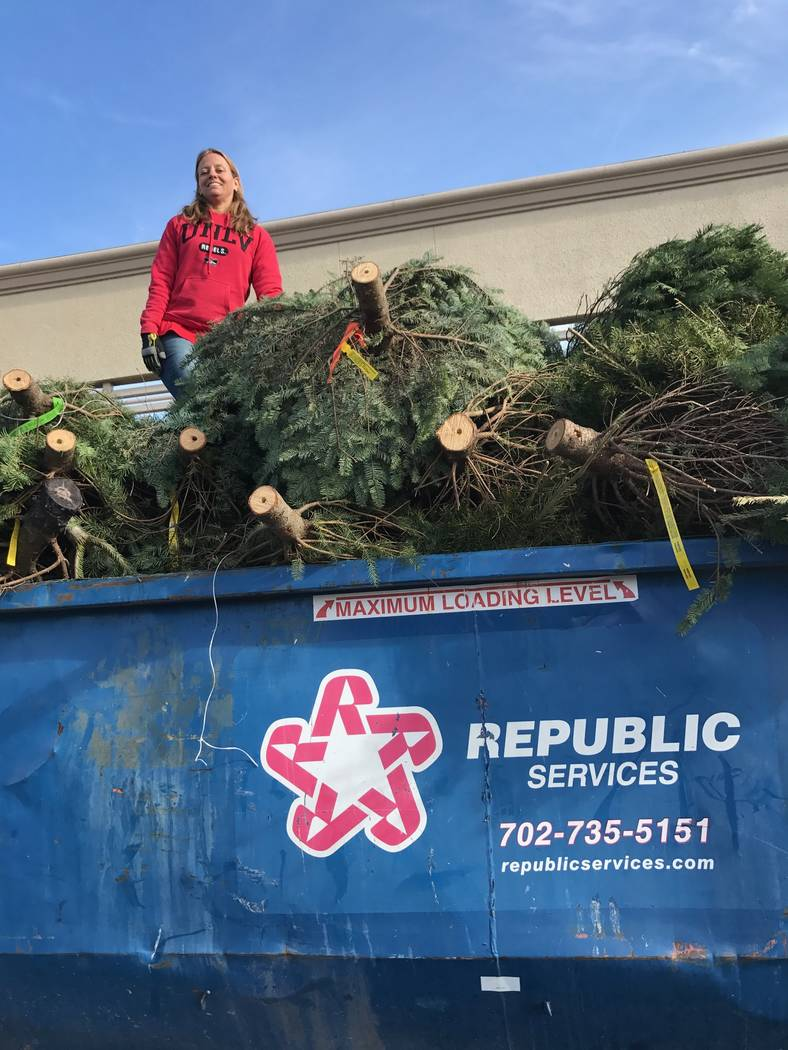 Tara Pike-Nordstrom, UNLV Rebel Recycling Program manager and sustainability coordinator, stands atop fresh-cut Christmas trees in a Lowe's dumpster. Pike-Nordstrom, who also co-chairs Southern Ne ...