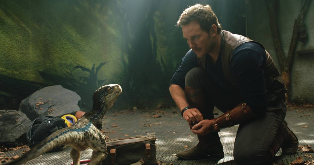 "Owen (CHRIS PRATT) with a baby Velociraptor in ""Jurassic World: Fallen Kingdom.""  When the island's dormant volcano begins roaring to life, Owen and Claire (BRYCE DALLAS H ..."