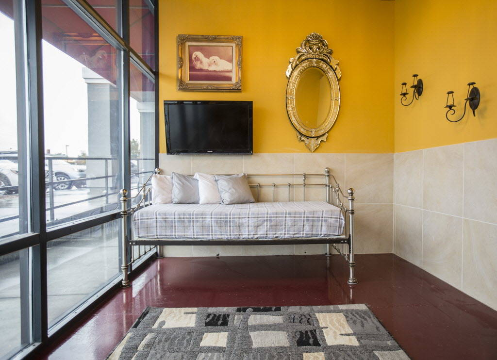 A luxury suite at Las Vegas Pet Resort on Tuesday, January 9, 2018, in Las Vegas. Benjamin Hager Las Vegas Review-Journal @benjaminhphoto
