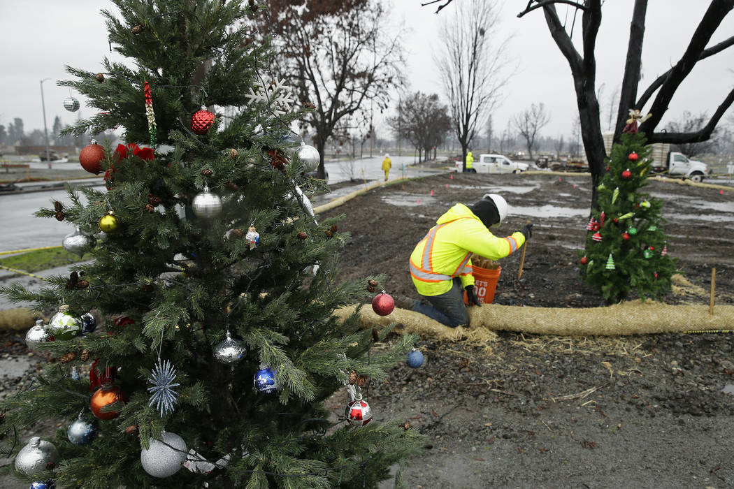 Framed between a pair of Christmas trees a worker secures a roll of wattle for erosion control in the wildfire damaged Coffey Park neighborhood, Monday, Jan. 8, 2018, in Santa Rosa, Calif. Storms  ...