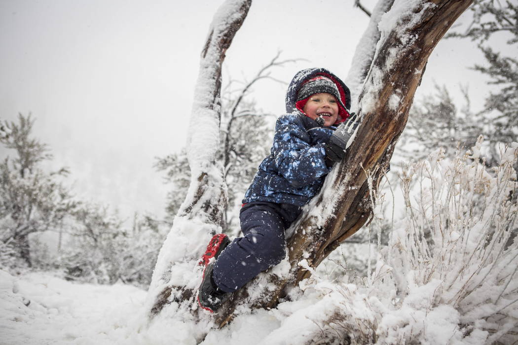 Jacob Carbone, 3, enjoys recent snowfall at Mount Charleston on Tuesday, Jan. 9, 2018. Patrick Connolly Las Vegas Review-Journal @PConnPie
