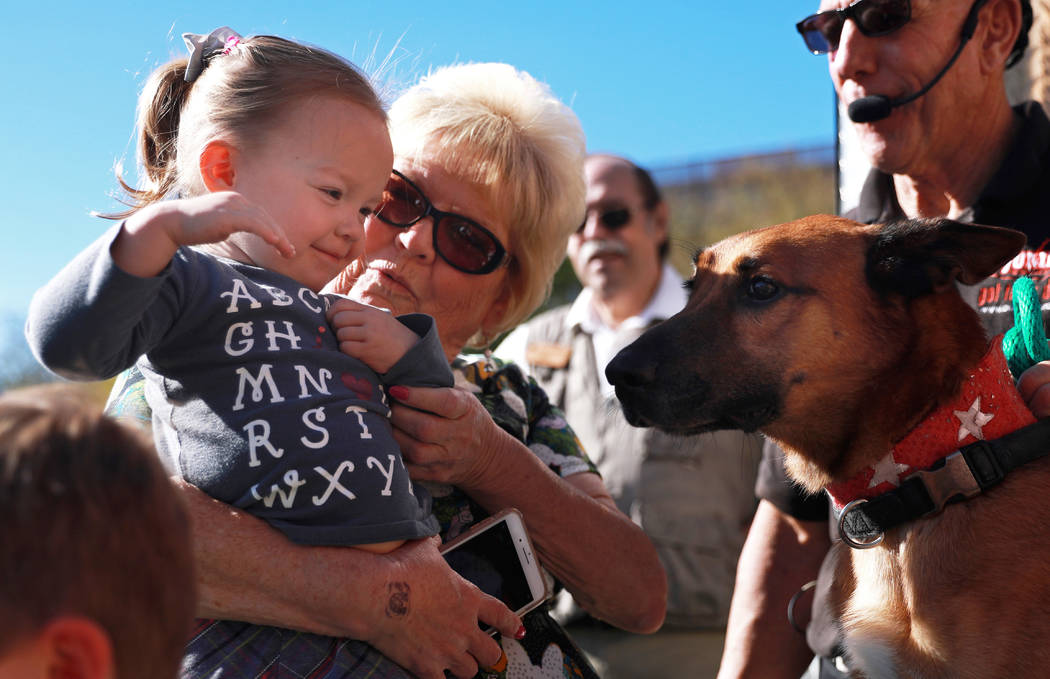 Cheri Mathews and her 2-year-old granddaughter, Hannah Hauser, meet the canine stars after Jump! The Ultimate Dog Show at the Springs Preserve in Las Vegas, Jan. 13, 2018. The Las Vegas-based comp ...