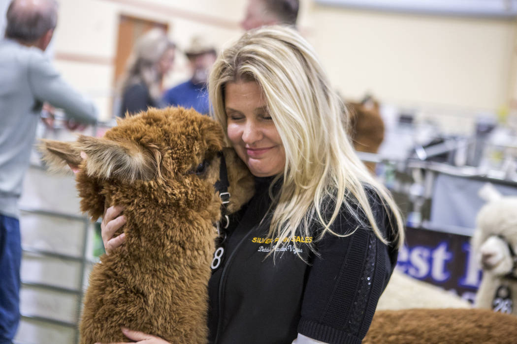 Debbie Harden-Vigus of Silver Penn Sales with Optimistic, a two-year-old female alpaca, during the registration and alpaca preview of the Priority Alpaca Auction at South Point in Las Vegas on Fri ...
