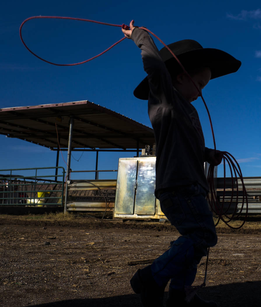 Roper, grandson of Cliven Bundy, shows off his roping skills to his grandfather at Bundy Ranch in Bunkerville on Thursday, Jan. 11, 2018. Bundy was released from federal custody after charges agai ...