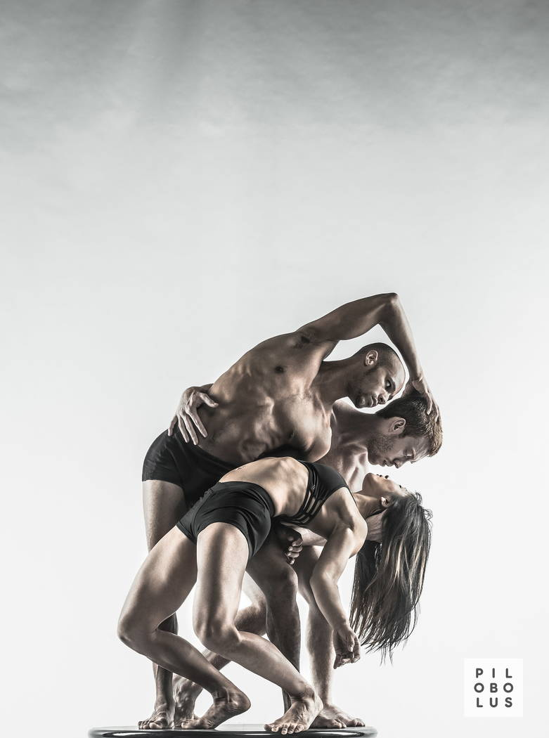 "Pilobolus brings ""On the Nature of Things"" to The Smith Center Jan. 23, 2018, as part of its ""Pilobolus Maximus"" tour."