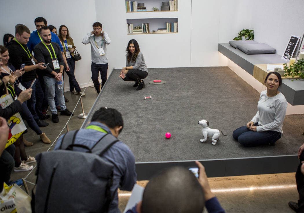 Exhibitors show off the new Sony Aibo robotic dog at CES in the Las Vegas Convention Center on Thursday, Jan. 11, 2018. Patrick Connolly Las Vegas Review-Journal @PConnPie