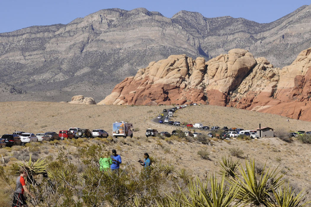Parked vehicles stretch along the Red Rock Loop Road on a busy day at the Red Rock National Conservation Area. (Las Vegas Review-Journal)