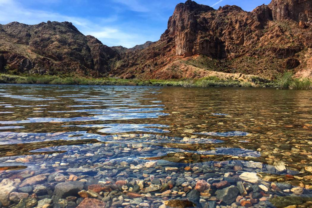 The Colorado River near Willow Beach, Arizona. (Janna Karel/Las Vegas Review-Journal)