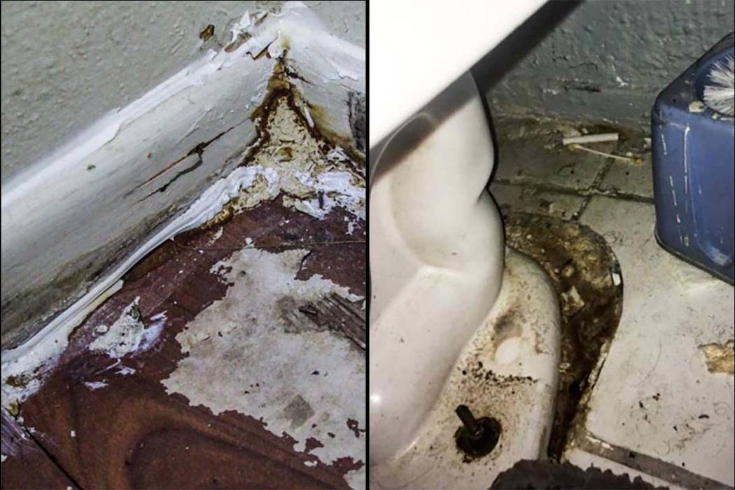 """Fresh caulking over mold and water damage, left, and a dirty, leaking toilet are included in a state audit reporting filthy and unsafe conditions in 37 """"community-based living arrangement"""" hom ..."""