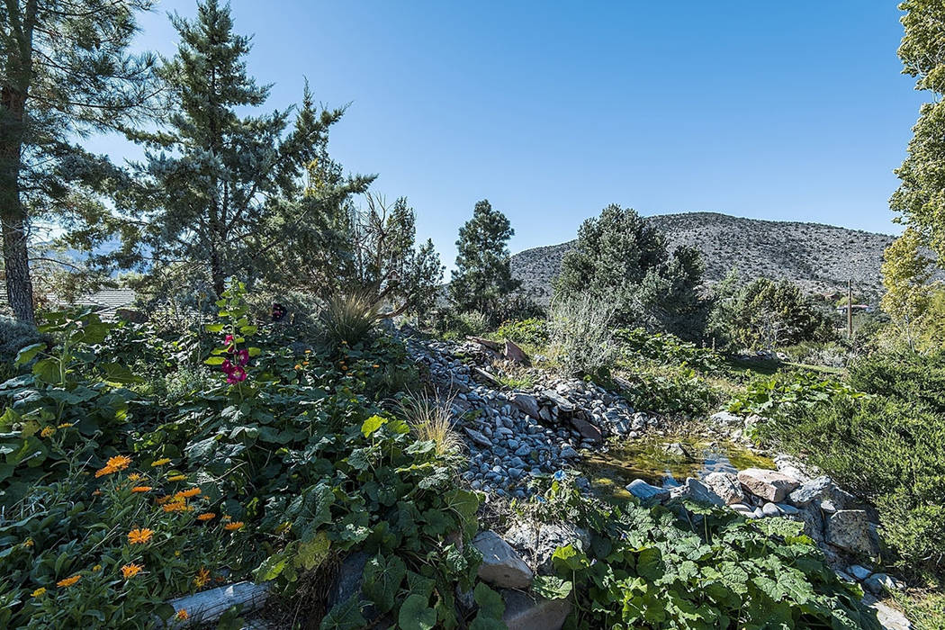 The home is near Toiyabe National Forest. (Realty One Group)