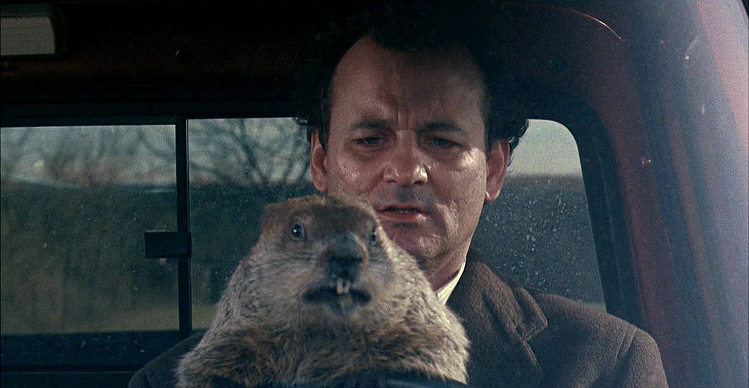 "Bill Murray in ""Groundhog Day"" (Sony Pictures)"