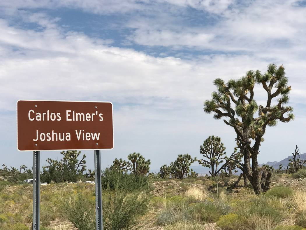 A sign points the way to Carlos Elmer's Joshua View in northwestern Arizona, about 105 miles southeast of Las Vegas. The viewpoint is one of just five place names nationwide that officially contai ...