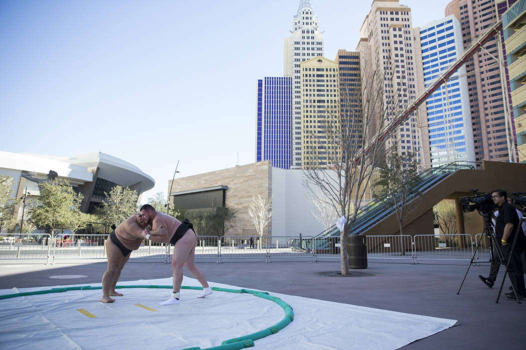 Professional sumo wrestlers Dan Kalbfleisch, left, and Soslan Gagloev give a demonstration during an Ultimate Sumo League press conference at Toshiba Plaza in Las Vegas, Wednesday, Feb. 7, 2018. E ...