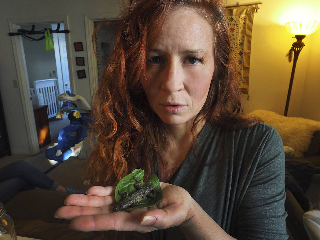 Michelle Carr, a nurse and new mother living in Kittery, Maine, holding a dead lizard that she found and while eating a fresh salad, recently on Monday, Feb. 5, 2018. (Rich Beauchesne/Portsmouth H ...