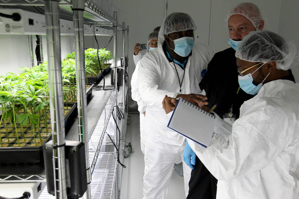 Jason Gully, chief operating officer of GreenMart of Nevada NLV LLC in North Las Vegas, second from right, gives a tour of his facility to New Jersey lawmakers and cannabis industry officials incl ...