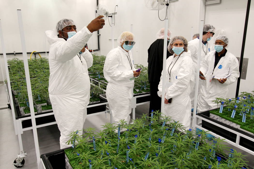 New Jersey lawmakers and cannabis industry officials tour GreenMart of Nevada NLV LLC in North Las Vegas, as part of a three-day marijuana ' fact-finding trip' to Nevada to see recreational stores ...
